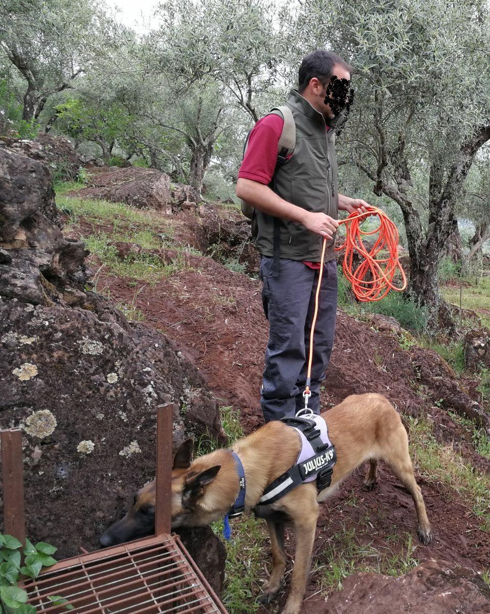 Guía Canino